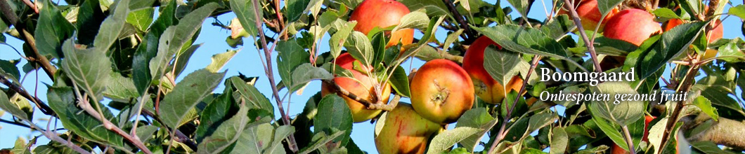 header_appels